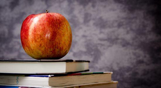 MEC abre consulta para 600 professores no PNLD