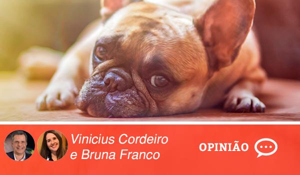 viniciusebruna3
