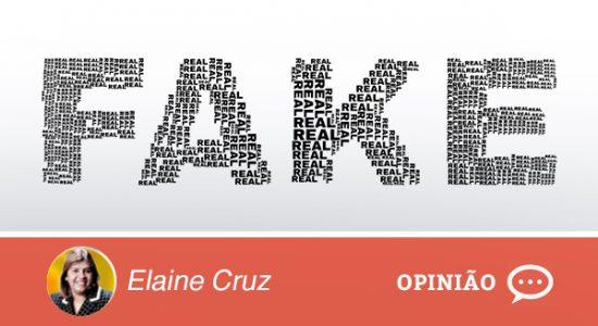 FAKE Opinião Colunistas