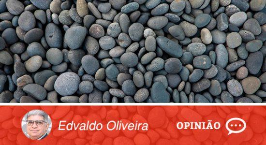 Modelo-Opinião-Colunistas-PRasdqwfd