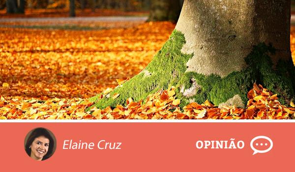 Opiniao-Elaine-4