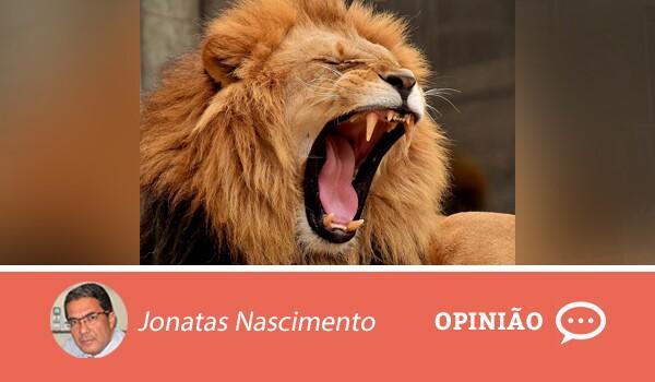 Opiniao-jonatas