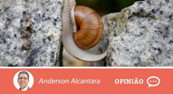 Opiniaoanderson-3