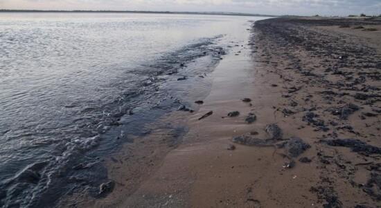 Óleo invadiu litoral do Nordeste brasileiro