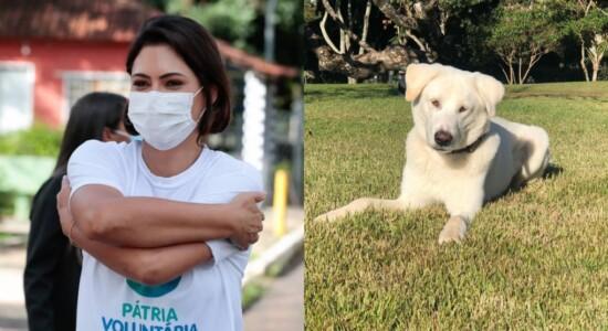 Michelle Bolsonaro adota cachorro resgatado da rua
