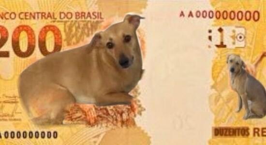 Usuários de redes sociais fizeram piada com a nova nota de R$ 200