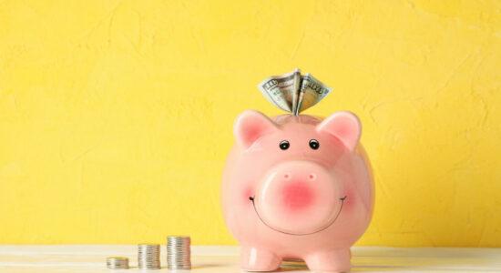 organização financeira doméstica
