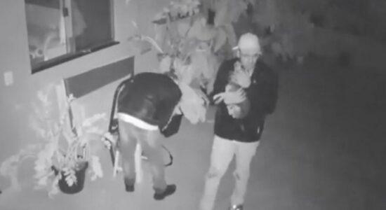 Bandidos seguraram cachorro durante roubo a residência