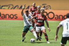 Flamengo venceu o Palmeiras e conquistou o bicampeonato