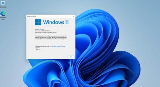 pplware_windows_11_11