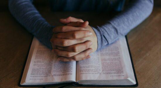 Palavra que renova sua fé