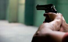 Senado aprova projeto para evitar que agressor de mulher tenha acesso a armas