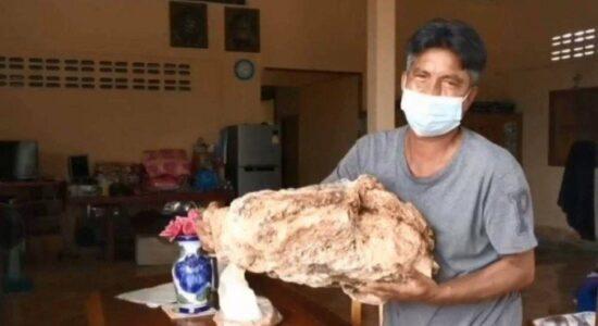 Pescador tailandês encontra vômito de baleia e pode se tornar milionário