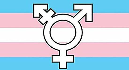 Símbolo Transgênero transexual bandeira lgbt
